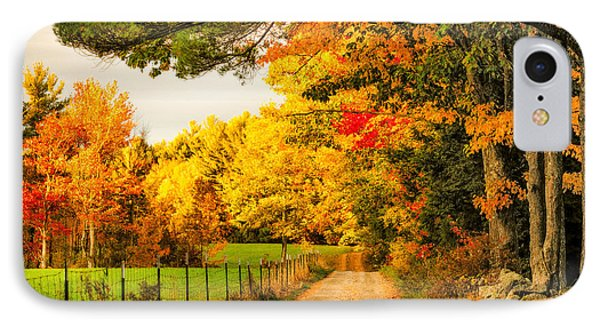 IPhone Case featuring the photograph I've Got Sunshine On A Cloudy Day by Robert Clifford