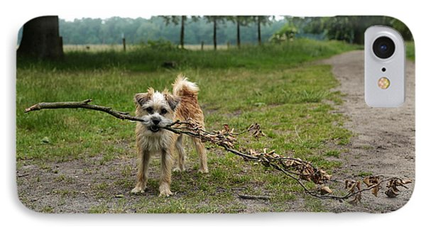 Dutch Dog With A Branch IPhone Case by Rona Black