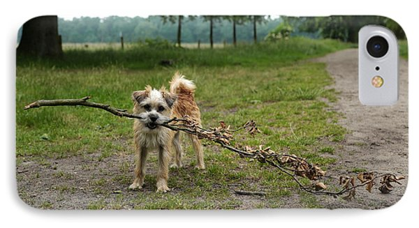 Dutch Dog With A Branch IPhone Case