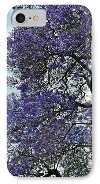 Jacaranda Clouds IPhone Case by Gwyn Newcombe