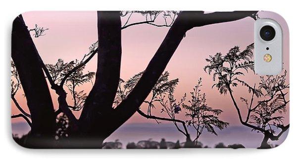 Jacaranda Silhouette IPhone Case by Rona Black