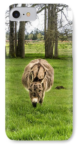 Jack Ass Confrontation IPhone Case by Jean Noren