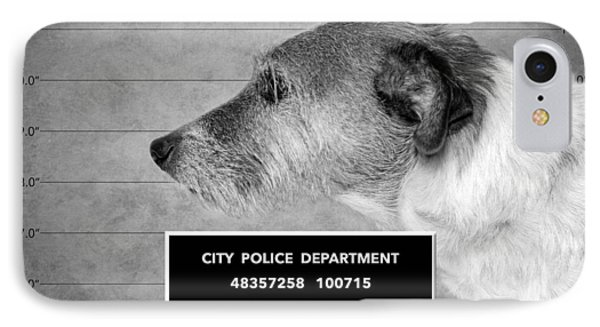 Jack Russell Terrier Mugshot - Dog Art - Black And White Phone Case by SharaLee Art