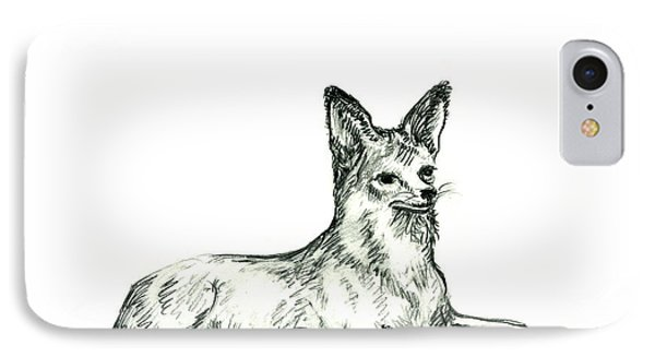 Jackal Sketch IPhone Case by Shirley Heyn