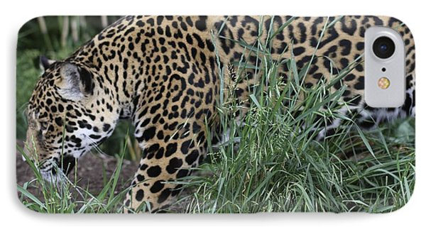 Jag IPhone Case by Gary Bridger