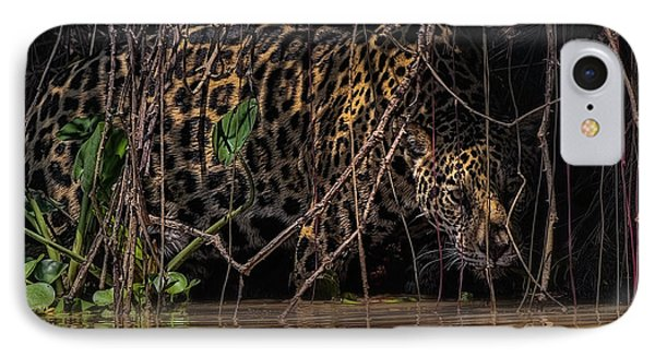 Jaguar In Vines IPhone Case by Wade Aiken