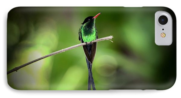Jamaican Hummingbird IPhone Case