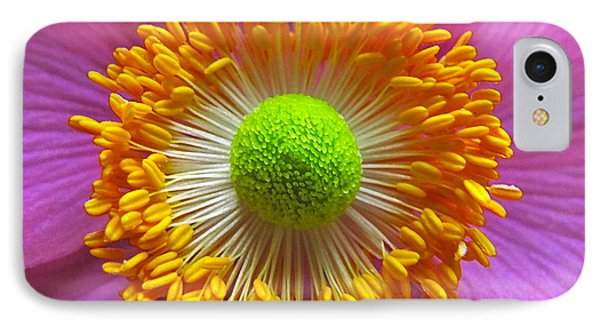 Japanese Anemone Close Up IPhone Case by Sean Griffin