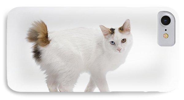 Japanese Bobtail Cat IPhone Case by Jean-Michel Labat