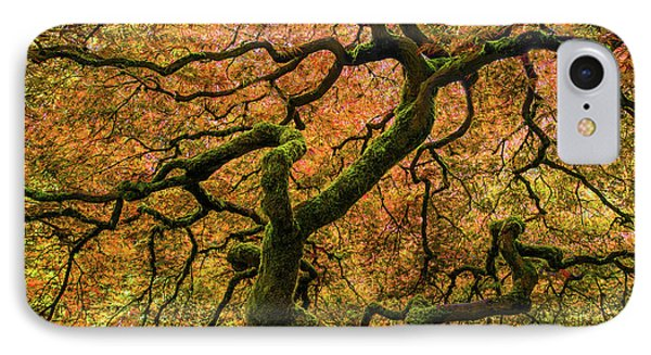Japanese Maple Tree IPhone Case by Larry Marshall