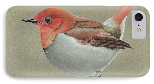 IPhone Case featuring the drawing Japanese Robin by Gary Stamp