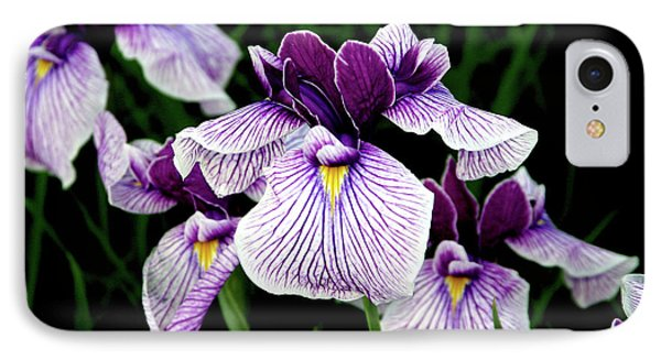 Japanese Water Iris In Purple 2714 H_2 IPhone Case