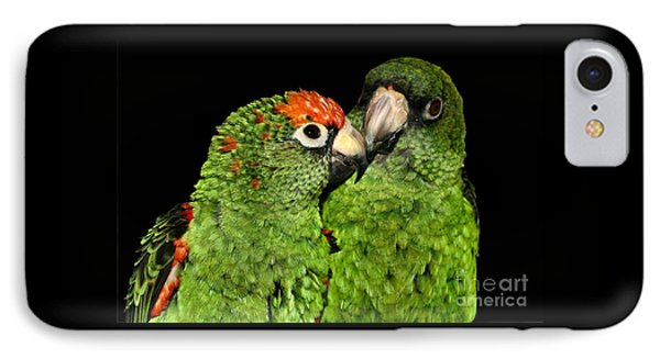 IPhone Case featuring the photograph Jardines Parrots by Debbie Stahre