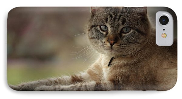IPhone Case featuring the photograph Jaspurr by Kim Henderson
