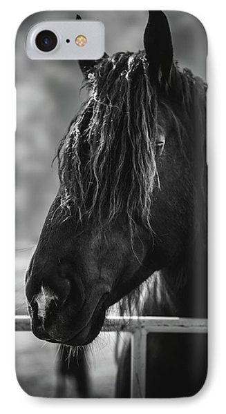 Jay The Rasta Horse IPhone Case by Debby Herold