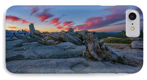 IPhone Case featuring the photograph Jeffrey Pine Dawn by Rick Berk