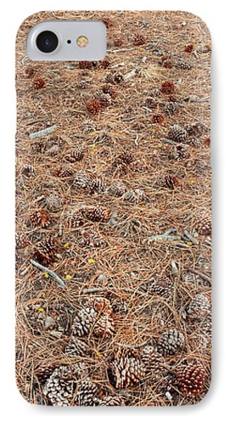 Jeffrey Pine Trunk And Pine Cones IPhone Case by Panoramic Images