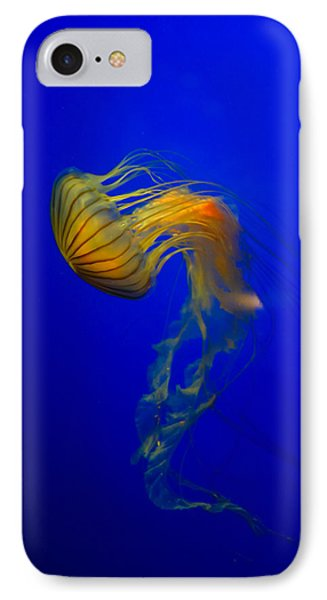 Jellyfish From The Deep Blue Phone Case by Nila Newsom