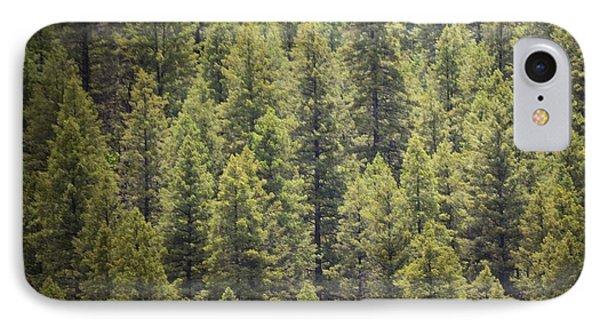 Jemez Forest Pine Mountainside IPhone Case