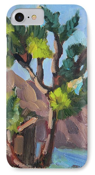 IPhone Case featuring the painting Joshua At Keys Ranch by Diane McClary