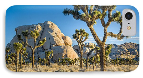 Joshua Tree And Intersection Rock IPhone Case