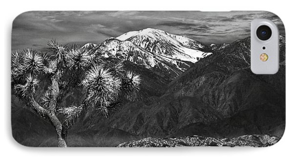 IPhone Case featuring the photograph Joshua Tree At Keys View In Black And White by Randall Nyhof