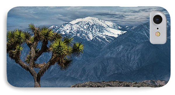 IPhone Case featuring the photograph Joshua Tree At Keys View In Joshua Park National Park by Randall Nyhof
