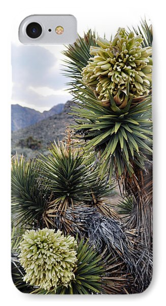 Joshua Tree Bloom Rainbow Mountain IPhone Case by Kyle Hanson