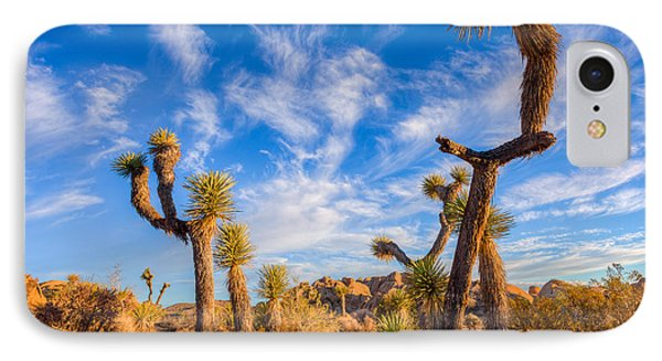 IPhone Case featuring the photograph Joshua Tree Dawn by Rikk Flohr