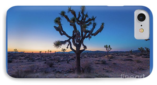 Joshua Tree Glow IPhone Case by Robert Loe
