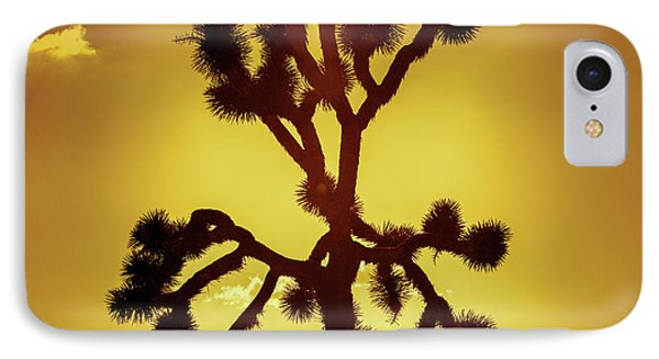 IPhone Case featuring the photograph Joshua Tree by Stephen Stookey