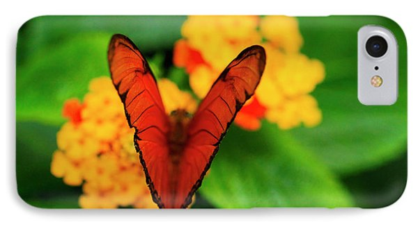 IPhone Case featuring the photograph Julia Butterfly, Dryas Iulia by Ralph A Ledergerber-Photography