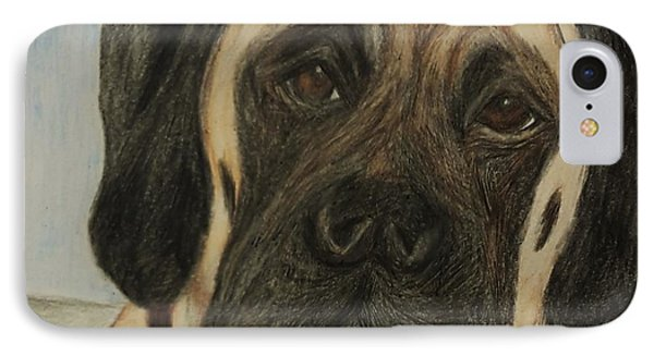 Julie's Dog Lounging IPhone Case by Christy Saunders Church