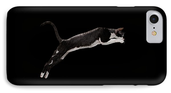 Jumping Cornish Rex Cat Isolated On Black IPhone Case by Sergey Taran