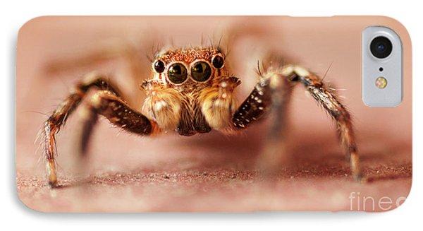 Jumping Spider Phone Case by Venura Herath