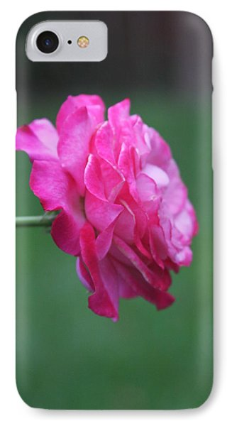 IPhone Case featuring the photograph June Rose by Vadim Levin
