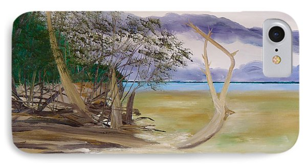 Jungle Gym Mangrove Tree IPhone Case by Troy Thomas