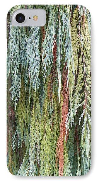 Juniper Leaves - Shades Of Green IPhone Case by Ben and Raisa Gertsberg