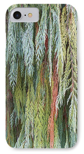 IPhone Case featuring the photograph Juniper Leaves - Shades Of Green by Ben and Raisa Gertsberg