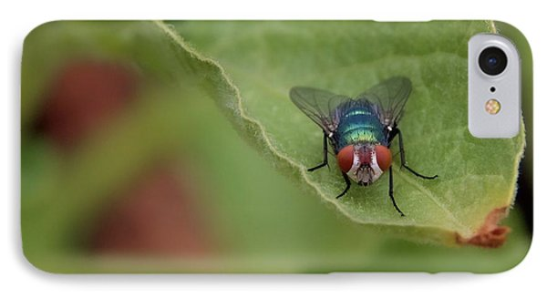 IPhone Case featuring the photograph Just A Fly by Scott Holmes