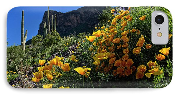 Just A Little Sunshine IPhone Case by Lucinda Walter
