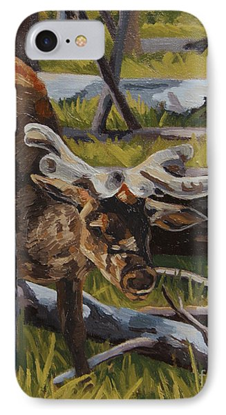 IPhone Case featuring the painting Just A Peek by Erin Fickert-Rowland
