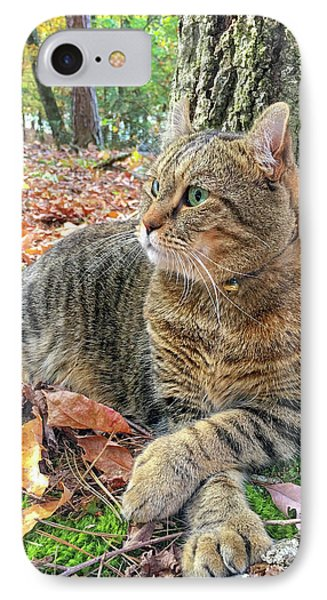 Just Chillin' In The Woods IPhone Case by Susan Leggett