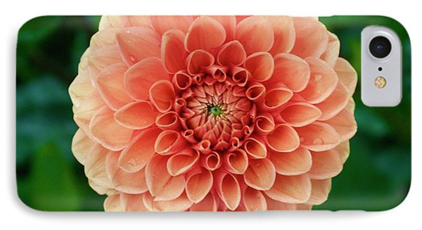 Just Peachy IPhone Case by Alice Mainville