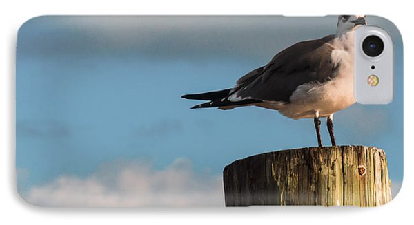 Just Standing On The Dock Phone Case by Phillip Burrow