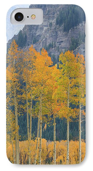 IPhone 7 Case featuring the photograph Just The Ten Of Us by David Chandler