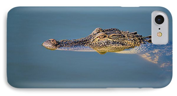 Juvenile Alligator Head In Blue Water IPhone Case