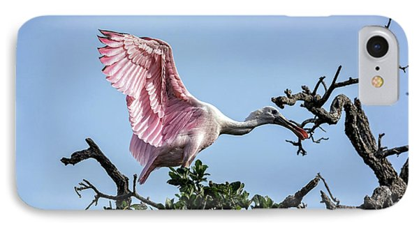 Juvenile Roseate Spoonbill Readying Its Wings IPhone Case