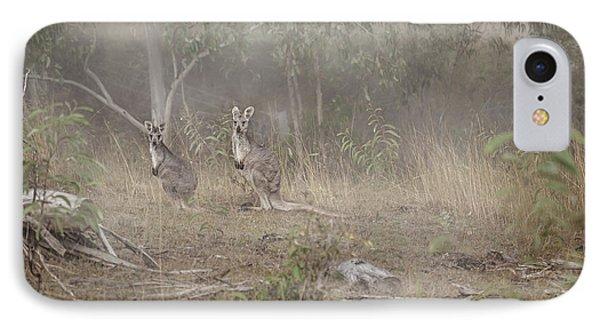 Kangaroo iPhone 7 Case - Kangaroos In The Mist by Az Jackson