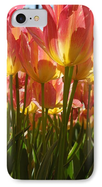 Kathy's Tulips IIi IPhone Case by Peg Toliver